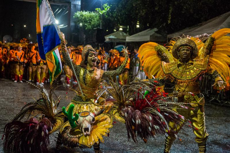 Escola de Samba da Matinha - Carnaval 2018. Foto: Fernando Sette