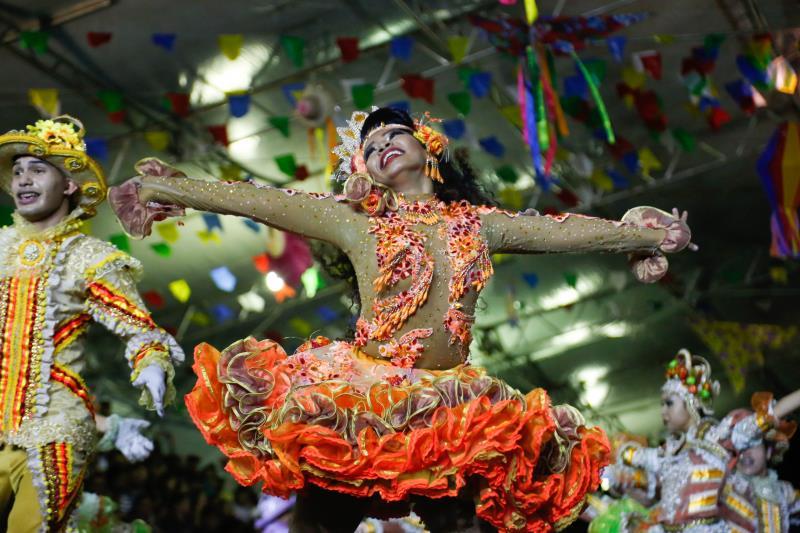 As vagas estão distribuídas em 12 grupos de pássaros juninos, quatro grupos de cordões de bichos, 20 grupos parafolclóricos de dança e música, oito grupos de bois-bumbá e oito grupos musicais de carimbó pau e corda.