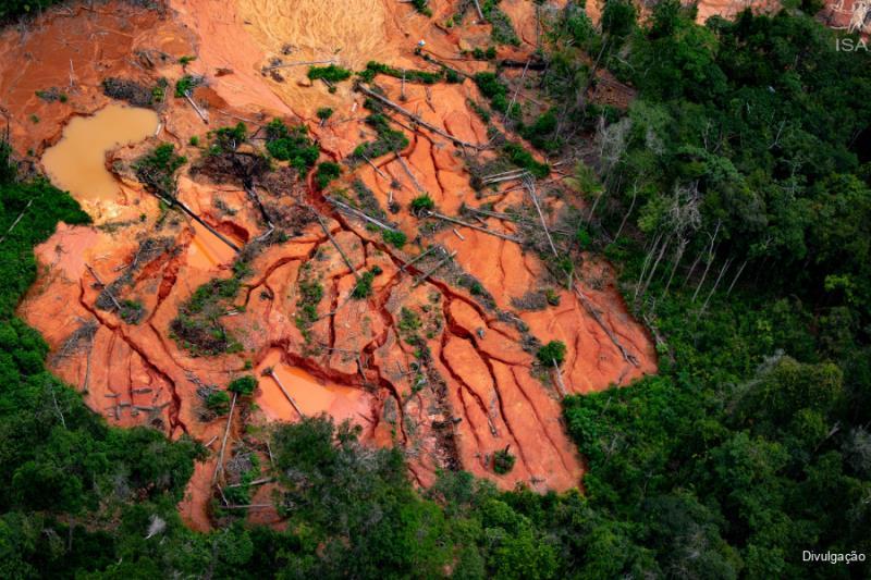 As imagens divulgadas mostram o avanço desenfreado do garimpo ilegal na terra indígena