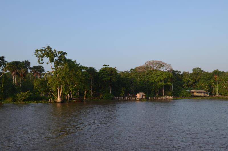 No Pará há mais de 300 mil famílias vivendo em áreas de florestas comunitárias