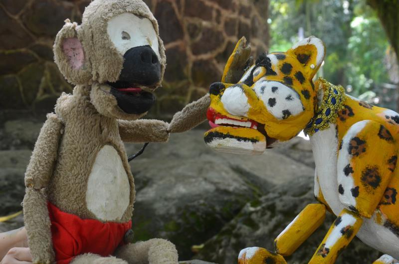 É o macaco que conduz a narrativa, revelando maneiras simples de preservar o meio ambiente