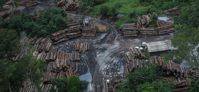 Segundo o Imazon, abril de 2020 registrou  a maior devastação da floresta amazônica dos últimos dez anos.