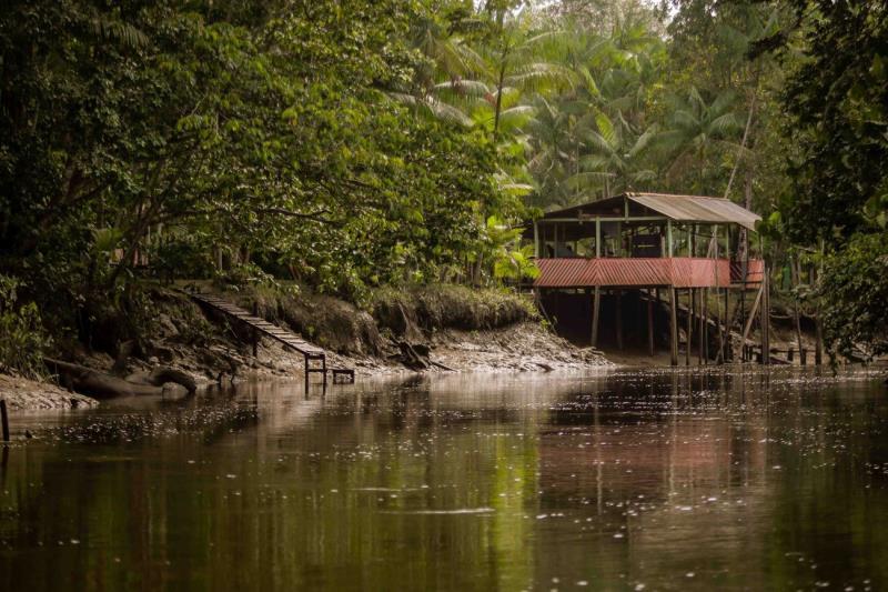 Estado tem enorme variedade de espécies nativas que tornam um passeio às margens de rios e furos um espetáculo à parte.