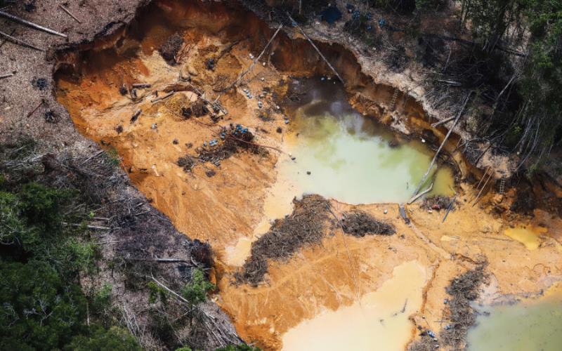 De janeiro a dezembro de 2020, uma área equivalente a 500 campos de futebol foi devastada na TI  Yanomami