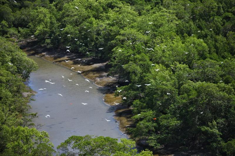 Pará tem um lado banhado pelo Atlântico e esbanja regiões turísticas e paisagens formadas por florestas, praias de rio, furos e igarapés.