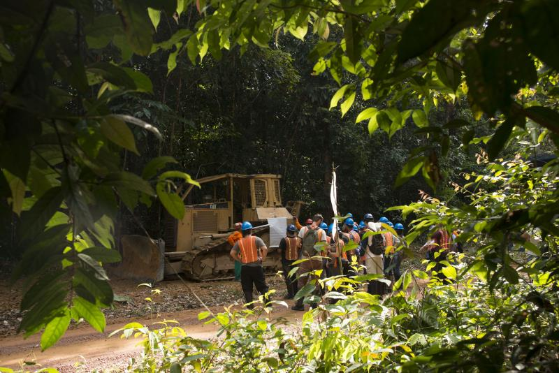 Assunto: Profissionais fazendo curso de manejo florestal Local:Paragominas-PA Data:11/2014 Autor:Delfim Martins