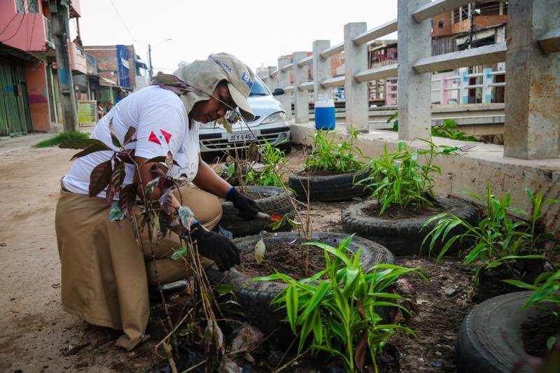 Mudas plantadas na Cremação são fornecidas pela Prefeitura de Belém.