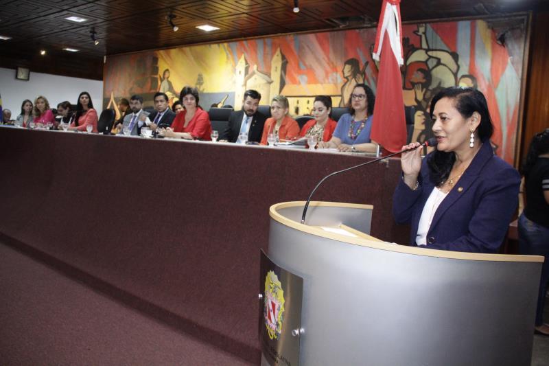 Deputada destaca os altos índices de violência contra mulher no Pará