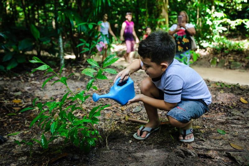 Arthur Evangelista, de 6 anos, plantou sua primeira árvore neste domingo, 20, no Bosque Rodrigues Alves.