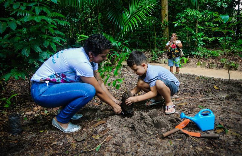 """""""Plantei pela primeira vez uma muda de árvore. Estou muito feliz porque antes só regava as plantas da minha avó. E eu vou vir aqui sempre ver ela"""", disse Arthur Evangelista, de 6 anos."""