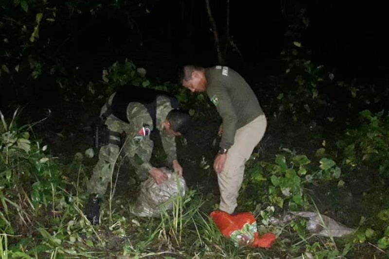 As equipes encontraram os animais vivos sendo transportados em sacas. Para tentar fugir da fiscalização alguns vendedores fizeram o transporte durante a noite e de madrugada