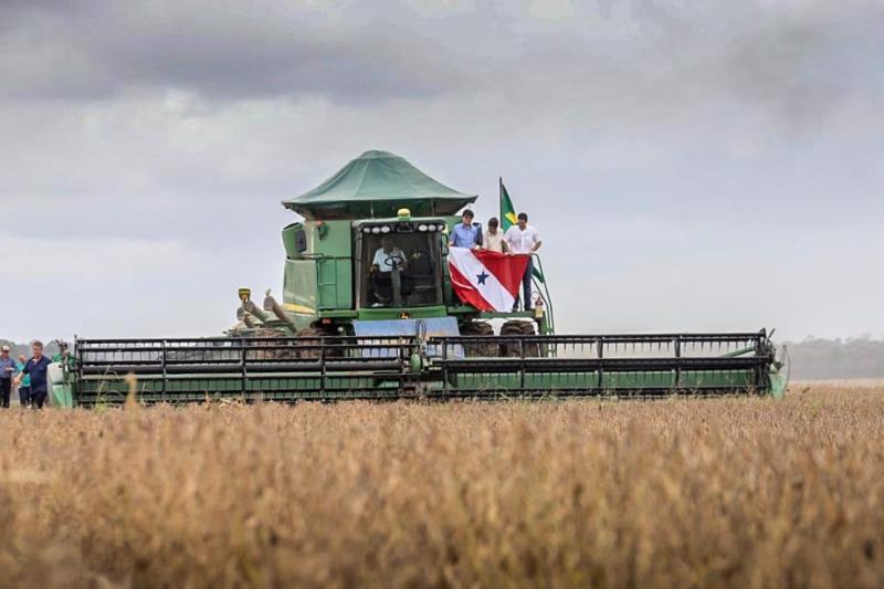 Início da colheita de soja e do plantio de milho safrinha na Fazenda Cristo Rei, em Belterra, no oeste do Pará.