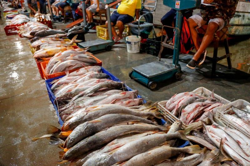Comercialização do pescado na Pedra e Barcos