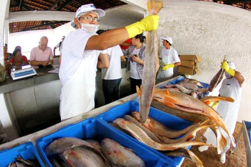 Feira do Pescado terá preços 60% mais baratos este ano