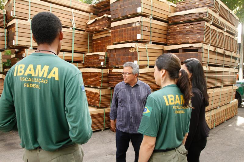A madeira doada é da espécie ipê, que tem alto valor comercial no mercado