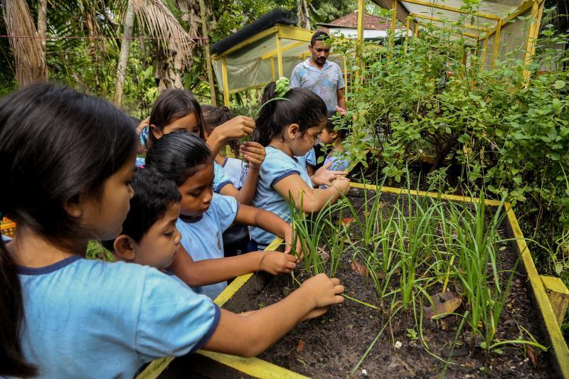 A Prefeitura de Belém também desenvolve dentro das escolas municipais projetos de educação alimentar, como o projeto Horta Escolar Pedagógica