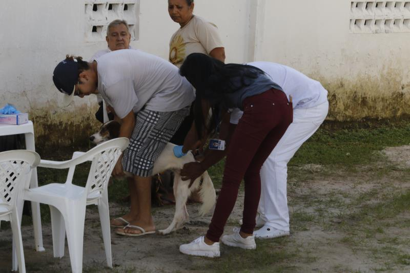 O Prefeitura no Bairro oferece serviços de vacinação de cães e gatos e castração por meio do Castramóvel