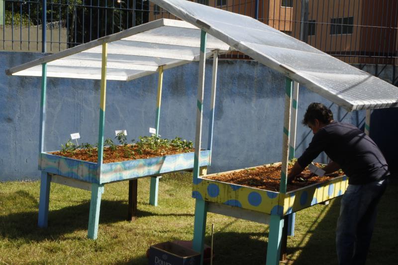 A Unidade do CRIE no residencial Quinta dos Paricás possui uma horta escolar que é mantidas pelos estudantes