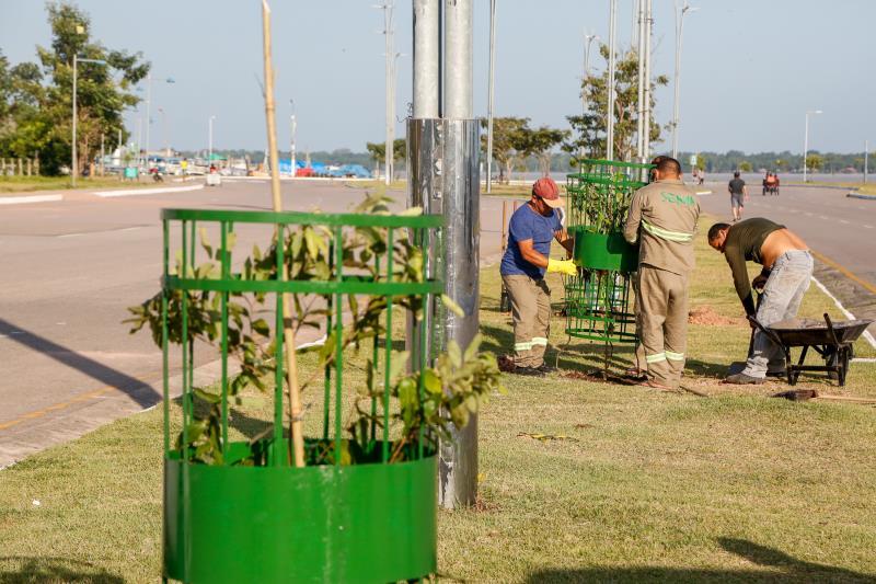 O plantio das dez mudas de oitizeiros foi simbólico, mas a previsão é que de 500 a mil espécies sejam cultivadas até o final deste ano