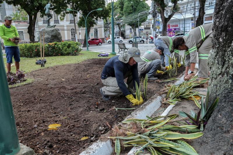 A equipe de paisagismo da Semma atua continuamente na reposição de vegetais em praças, rua e avenidas
