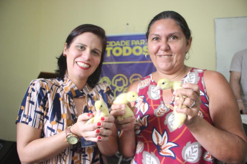 Outras 50 famílias da ilha de Caratateua receberam 350 filhotes de patos também doados pela Secon