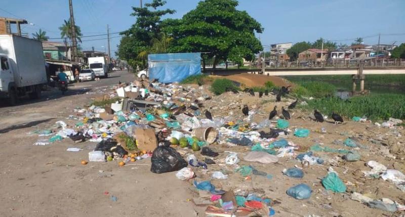 Várias áreas de Belém viram pequenos lixões da noite para o dia, com a ação ilegal dos carrinheiros