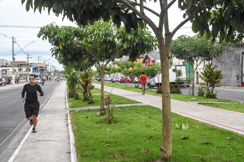 No dia da inauguração da via foram plantadas 14 espécies de Ipê.