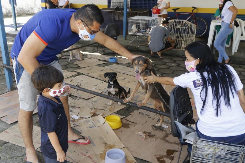 Atualmente o Centro tem cerca de 100 animais prontos para serem adotados.