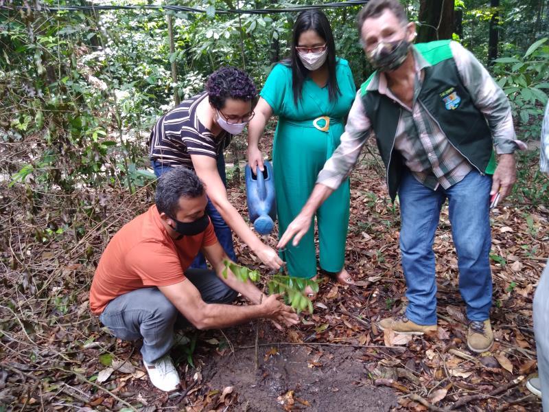 Plantio de muda no Bosque.