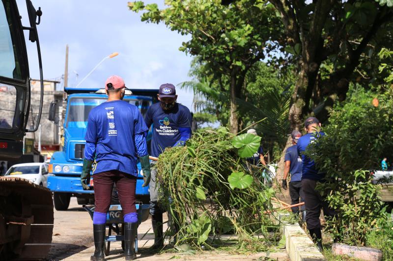 Semma fez o serviço de poda de árvores e retirada de galhos excessivos.