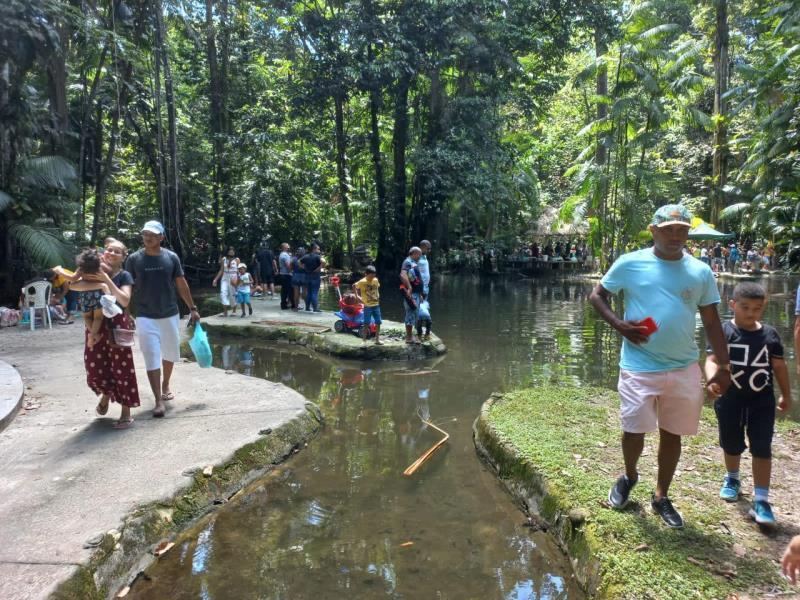 O ambiente agradável dentro do Bosque é um dos atrativos do parque zoobotânico da Amazônia.